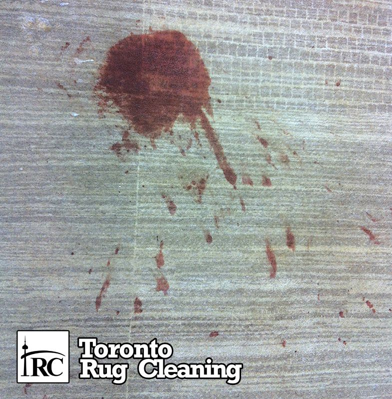 Rug & Carpet Stain Removal Services