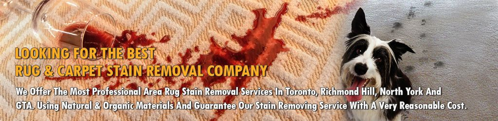Rug & Carpet Stain Removal, Rug Wine Spill, Toronto's Best Stain Removal Company